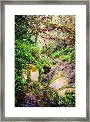 The Descent Down The Brook Framed Print by Marco Oliveira
