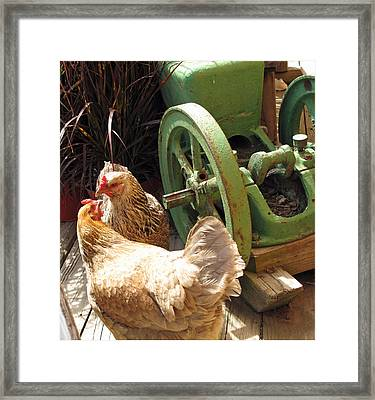 The Discussion Framed Print by Barbara McDevitt