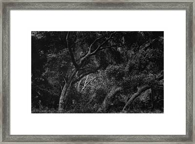 The Distant White Framed Print by Joseph Smith