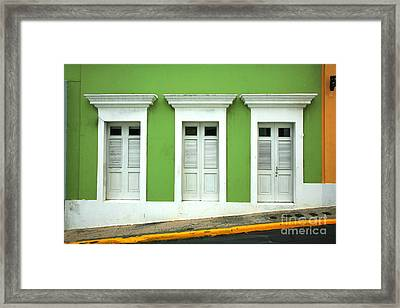 The Doors Framed Print by Timothy Johnson