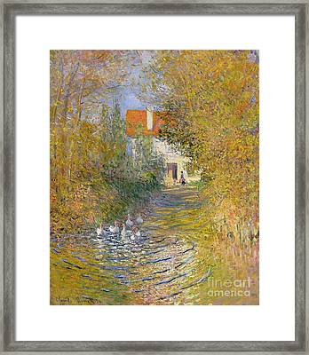 The Duck Pond Framed Print by Claude Monet