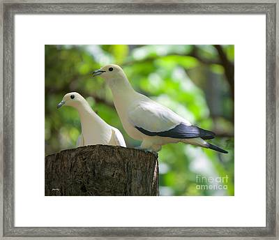 The Duet Framed Print by Judy Kay