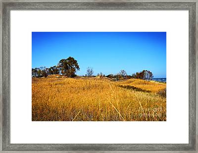 The Dunes - Lake Michigan Framed Print by Mary Machare