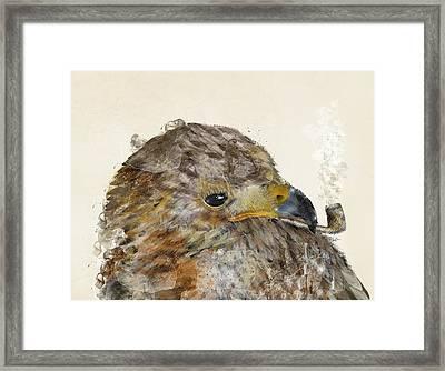 The Eagle Framed Print by Bri B