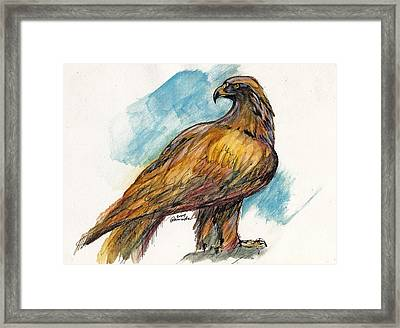 The Eagle Drawing Framed Print by Angel  Tarantella