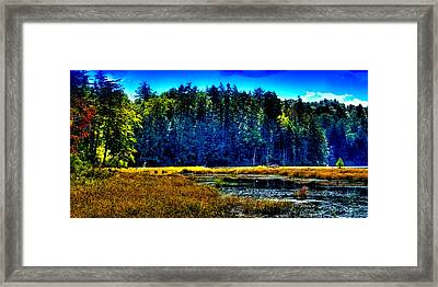 The East Shore Of Cary Lake Framed Print by David Patterson