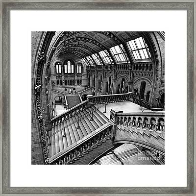 The Escher View Framed Print by Martin Williams