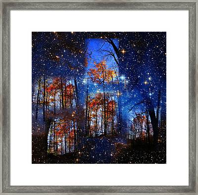The Face Of Forever Framed Print by Dave Martsolf