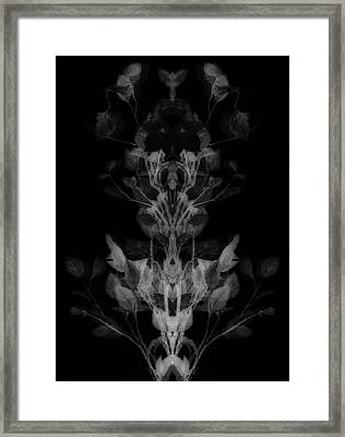 The Faces Of Nature Framed Print by Dan Sproul