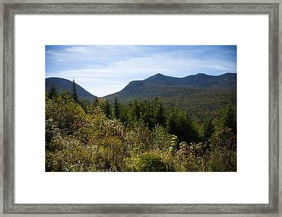 The Fearless One Framed Print by Sue OConnor