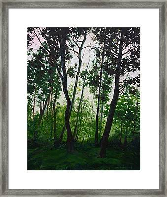 The Fen Framed Print by Jill Iversen