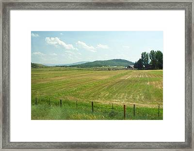 The Fields Of Summer Framed Print by Remegio Onia