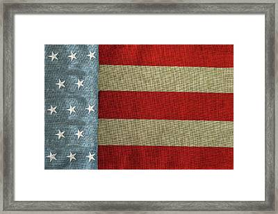 The Flag Framed Print by Tom Prendergast