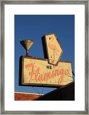 The Flamingo Framed Print by Troy Montemayor
