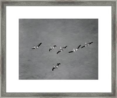The Flock Framed Print by Kim Hojnacki
