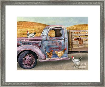 Where The Hens Gather  Framed Print by Sarah Batalka