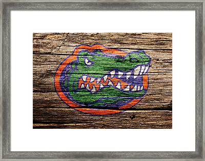 The Florida Gators Framed Print by Brian Reaves