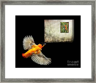 Red Bishop At The Gallery Framed Print by Jennie Breeze