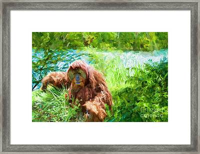 The Gardener Framed Print by Judy Kay