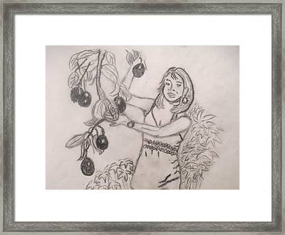 The Giving Avocado Tree Of My Childhood Series 1 Framed Print by Carmela Maglasang
