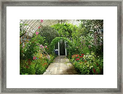The Glass Ceiling Framed Print by Diana Angstadt