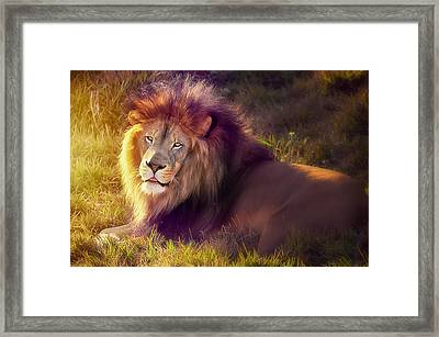 The Glorious King  Framed Print by Camille Lopez