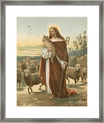 The Good Shepherd Framed Print by John Lawson