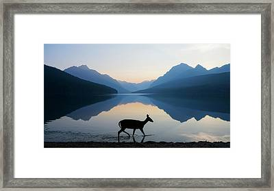 The Grace Of Wild Things Framed Print by Dustin  LeFevre
