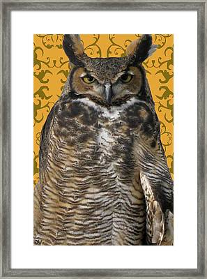 The Great Hored Owl Framed Print by Debra     Vatalaro