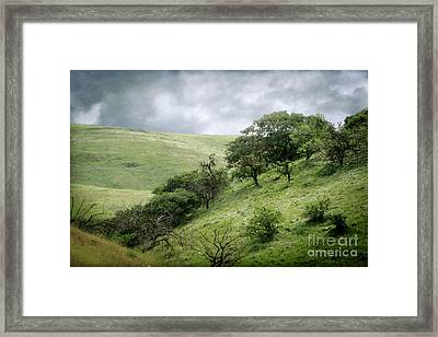 The Green Hills Of Home Framed Print by Ellen Cotton