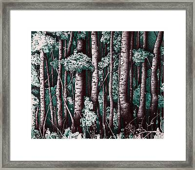 The Grove At Sand Creek Framed Print by Teddy Campagna