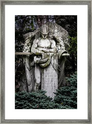 The Guardian Framed Print by Dale Kincaid