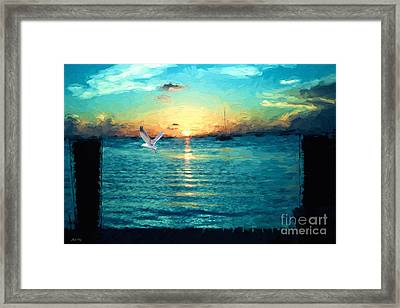 The Gull Framed Print by Judy Kay