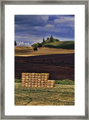 The Haystack Framed Print by Bonnie Bruno