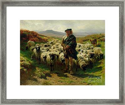 The Highland Shepherd Framed Print by Rosa Bonheur
