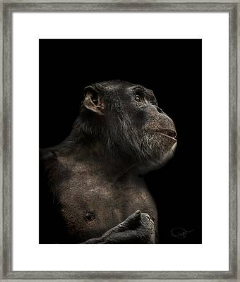 The Hitchhiker Framed Print by Paul Neville