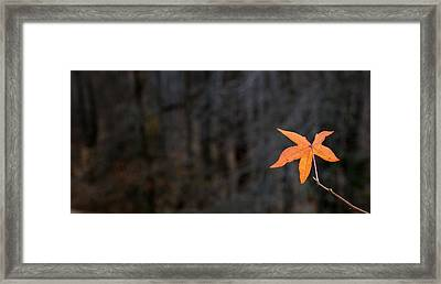 The Holdout  Framed Print by JC Findley