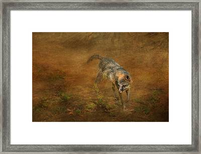 The Huntress Framed Print by Carla Parris