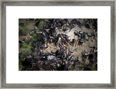 The Inferno Framed Print by Karen Lunney