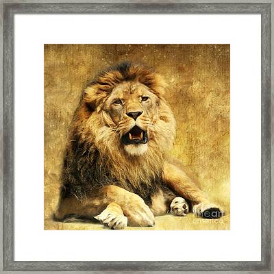 The King Framed Print by Angela Doelling AD DESIGN Photo and PhotoArt