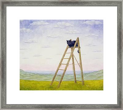 The Ladder Cat Framed Print by Ditz