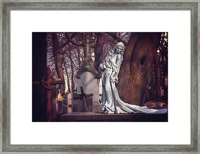The Lady Of Powazki Framed Print by Carol Japp
