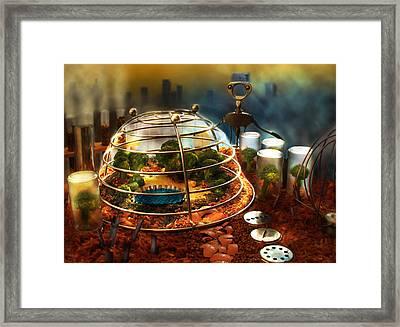 The Last Gardener Framed Print by Maggie Terlecki
