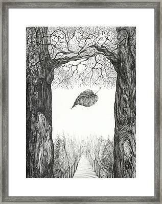 The Last Leaf. Better Image Framed Print by Anna  Duyunova