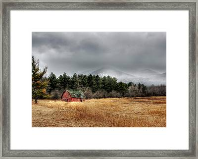 The Last Stand Framed Print by Lori Deiter