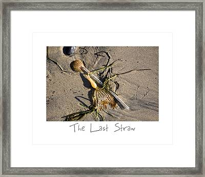 The Last Straw Framed Print by Peter Tellone