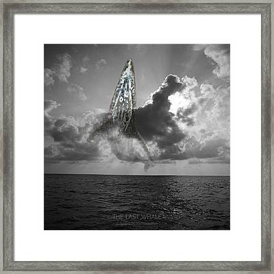 The Last Whale Framed Print by Andy Frasheski