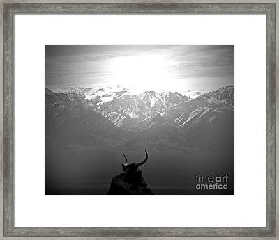 The Last Wild One Framed Print by Megan Chambers