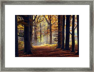 The Light At The End Of The Tunnel Framed Print by Roeselien Raimond