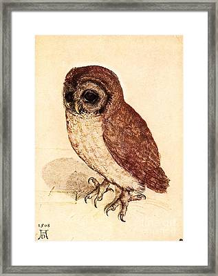 The Little Owl Framed Print by Pg Reproductions